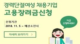 경력단절여성 채용기업 취업장려수당